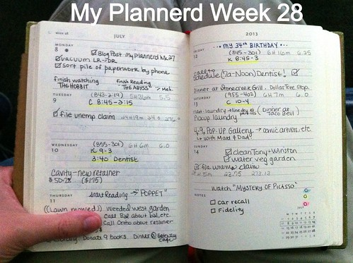 My Plannerd Week 28 by DIY Sara