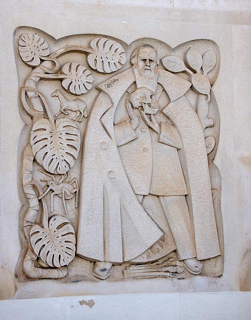 Darwin carving