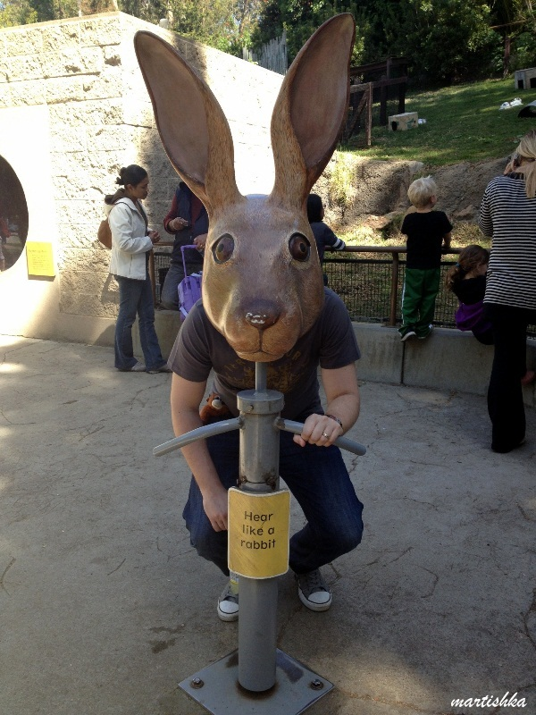 Oakland Zoo (24)