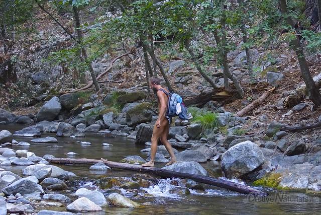 naturist 0002 Pine Ridge Trail, Big Sur, CA, USA