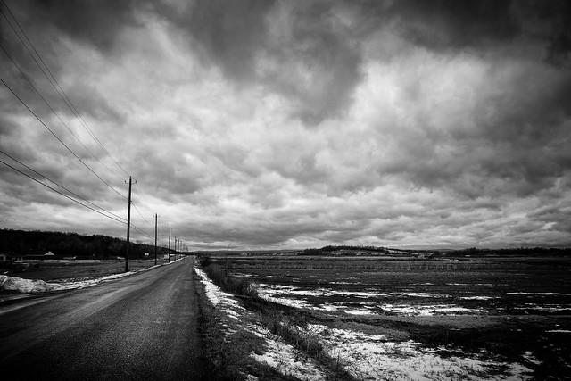 The Road - Sony RX10