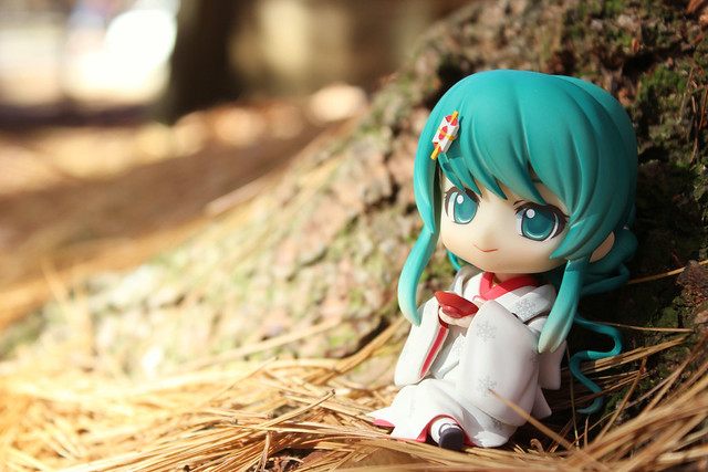 forest sake 1