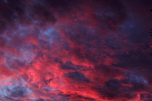 December 2013, San Diego Sunrise by InkSpot's Blot