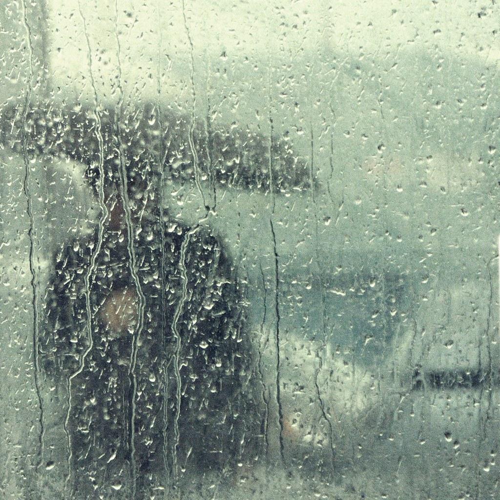 Woman with Umbrella Seen Through the Bus