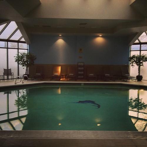 Pool at DoubleTree #denver North by @MySoDotCom
