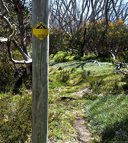Original Alpine Track marker