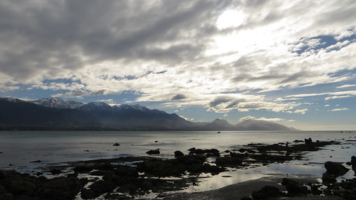 the bay at kaikoura