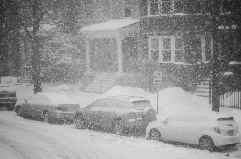 snowy giddings street