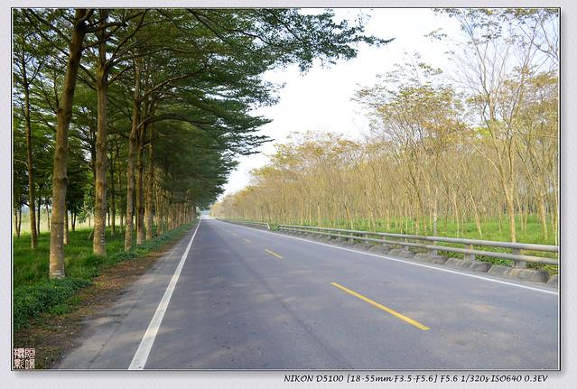 泰武鄉~沿山公路之吉貝木棉樹林+比悠瑪部落+田野風光 @ 阿凡端 私房景點 :: 痞客邦
