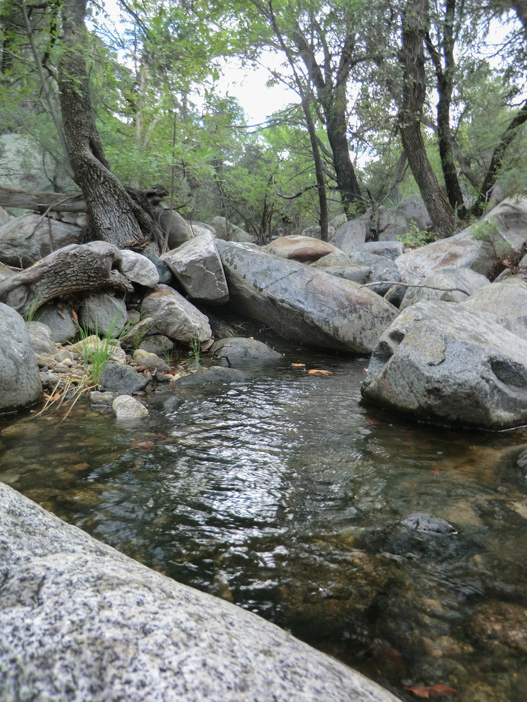 1309 South Fork of Edgar Canyon