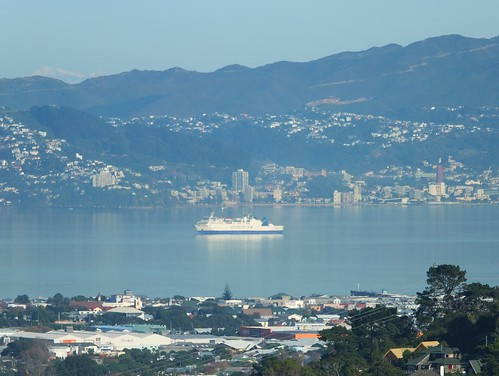 Wellington Harbour_0001.jpg by Patricia Manhire