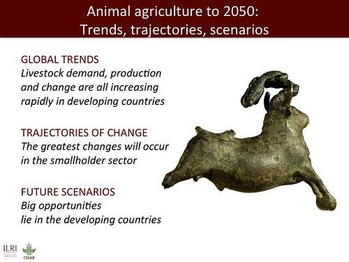 Jimmy Smith on emerging livestock markets: Slide53