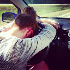 #GingerRoadTrip is stuck in traffic in SW Michigan. @thereal_gingerfoxxx isn't taking it well.
