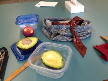 Thirty days of making: lunch bag