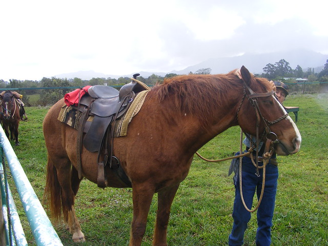 Picture from the Princeville Ranch