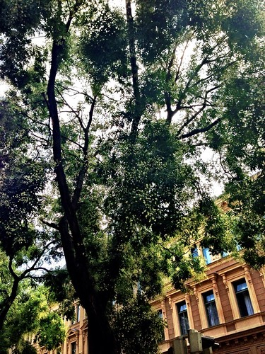 Pointillist Tree by SpatzMe