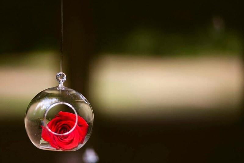 hanging rose ball