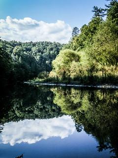 Estatoe Reflections