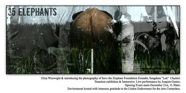 35 elephants