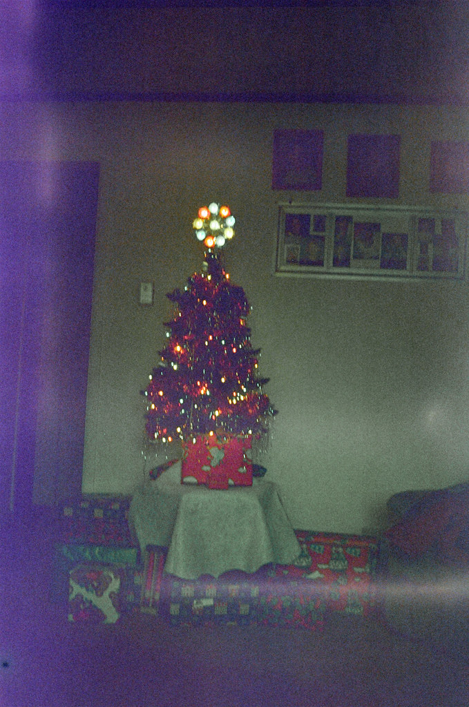 Found film - It's not such a bad tree