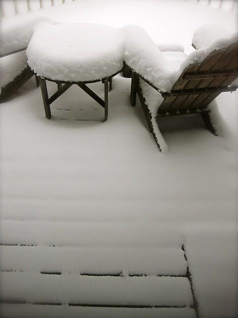 12.16.13 Snowbound