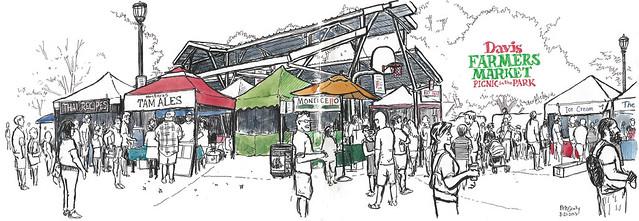 davis farmers market: picnic in the park