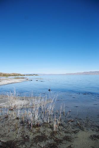 Bear Lake 14