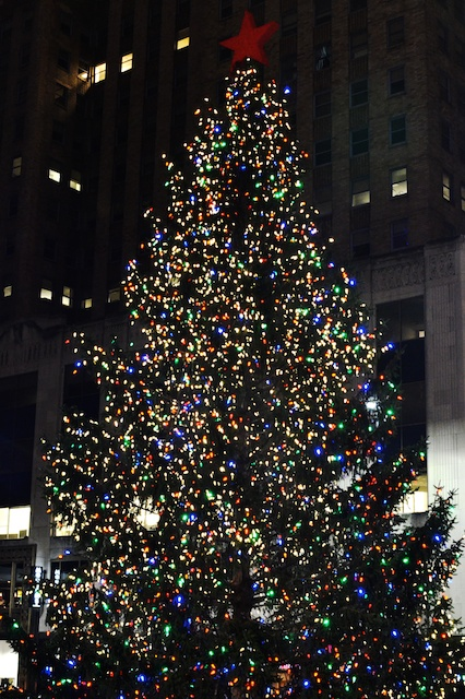 Fountain Square Christmas Tree