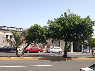 De pisa y corre a Veracruz