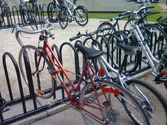 ariel, minha bike