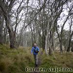 02 Viajefilos en Australia. Barrington NP 30