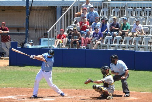 Sydney Blue Sox photo