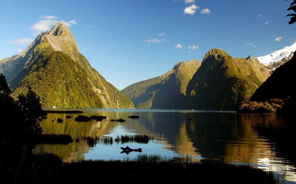Milford Sound. Fiordland.NZ