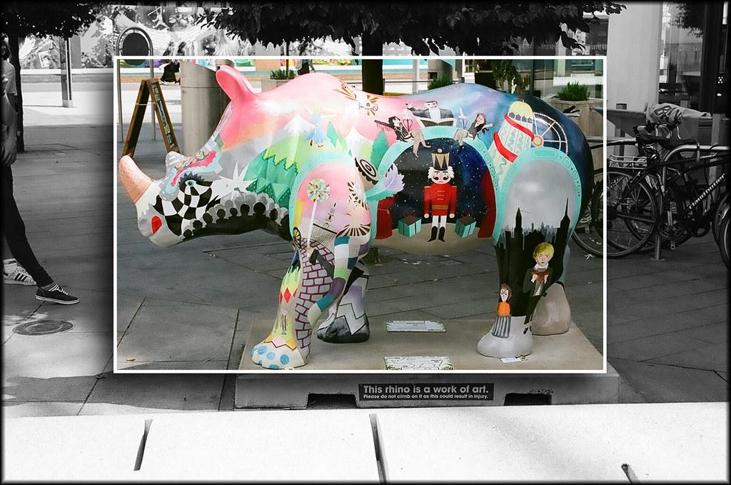 Go Rhinos:Rafiki
