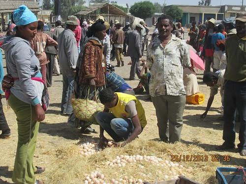 Poultry Markting in Meki town (Photo: ILRI\Abule Ebro)