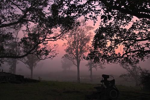 Pre-dawn by Fishman Dan