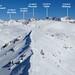 Winter Alta