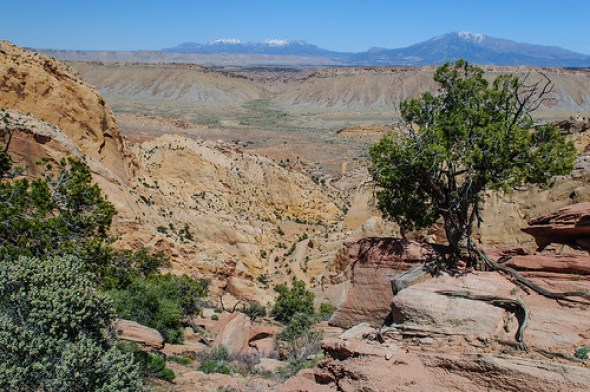 Burr Trail & Capitol Reef NP