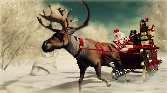 Dolly Santa