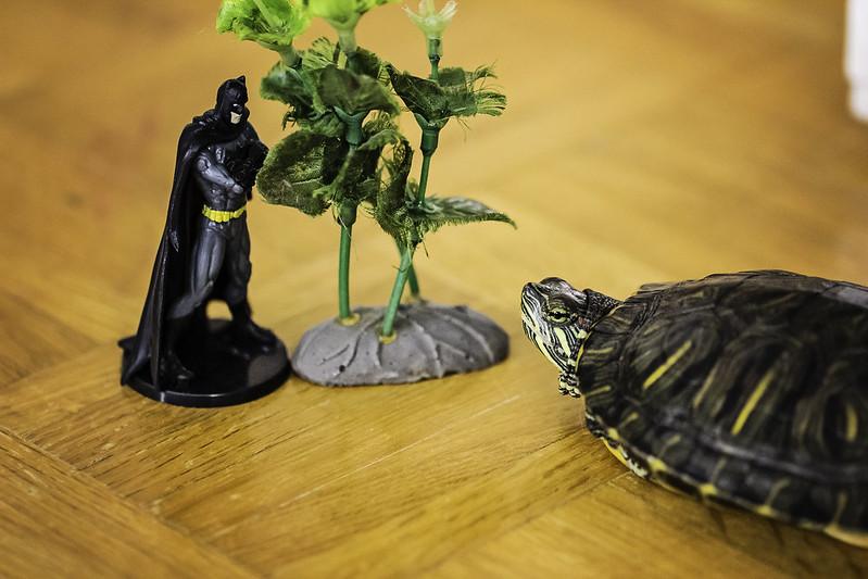 Batman is Unimpressed #1