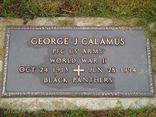 Calamus-George-black panthers.JPG