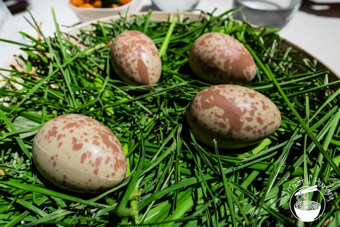 Pukeko Eggs