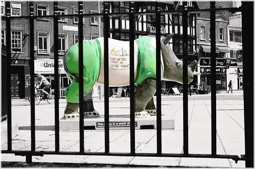 Go Rhinos:Flossy by Davidap2009