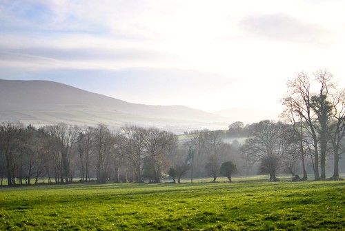 Christmas Day, Co. Wicklow, Ireland by knitahedron