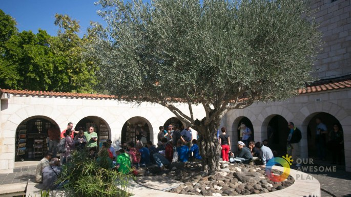Day 2- Church of the Multiplication of Loaves and Fish Tabgha - Our Awesome Planet-5.jpg