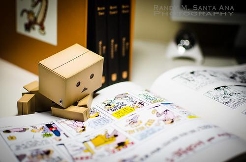 Danbo Reads Calvin & Hobbes.