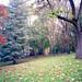 Poissy - Parc Messonier 04-4
