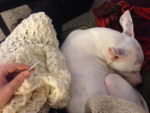 Knitting buddy