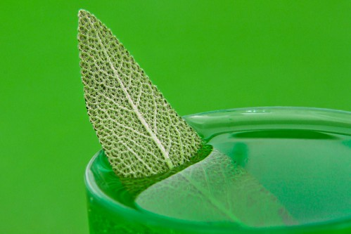 Green on Green in Green by Richard Le Sauvage