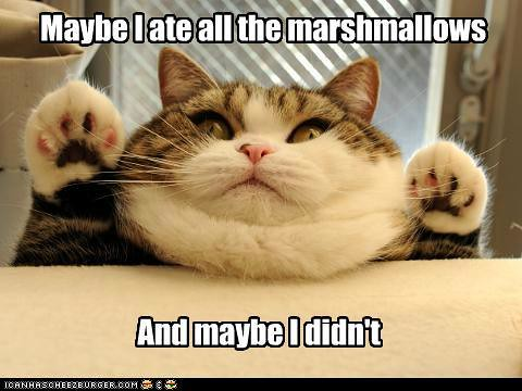 funny-pictures-marshmallows